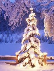 Картинки зима для телефонов