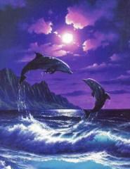 в картинка дельфины море
